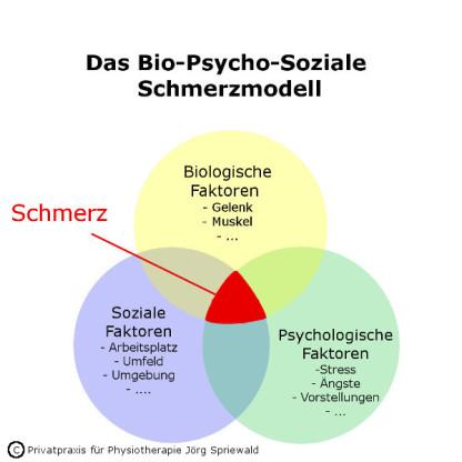 Schmerzmanagement Bergisch Gladbach | Privatpraxis für Physiotherapie Jörg Spriewald